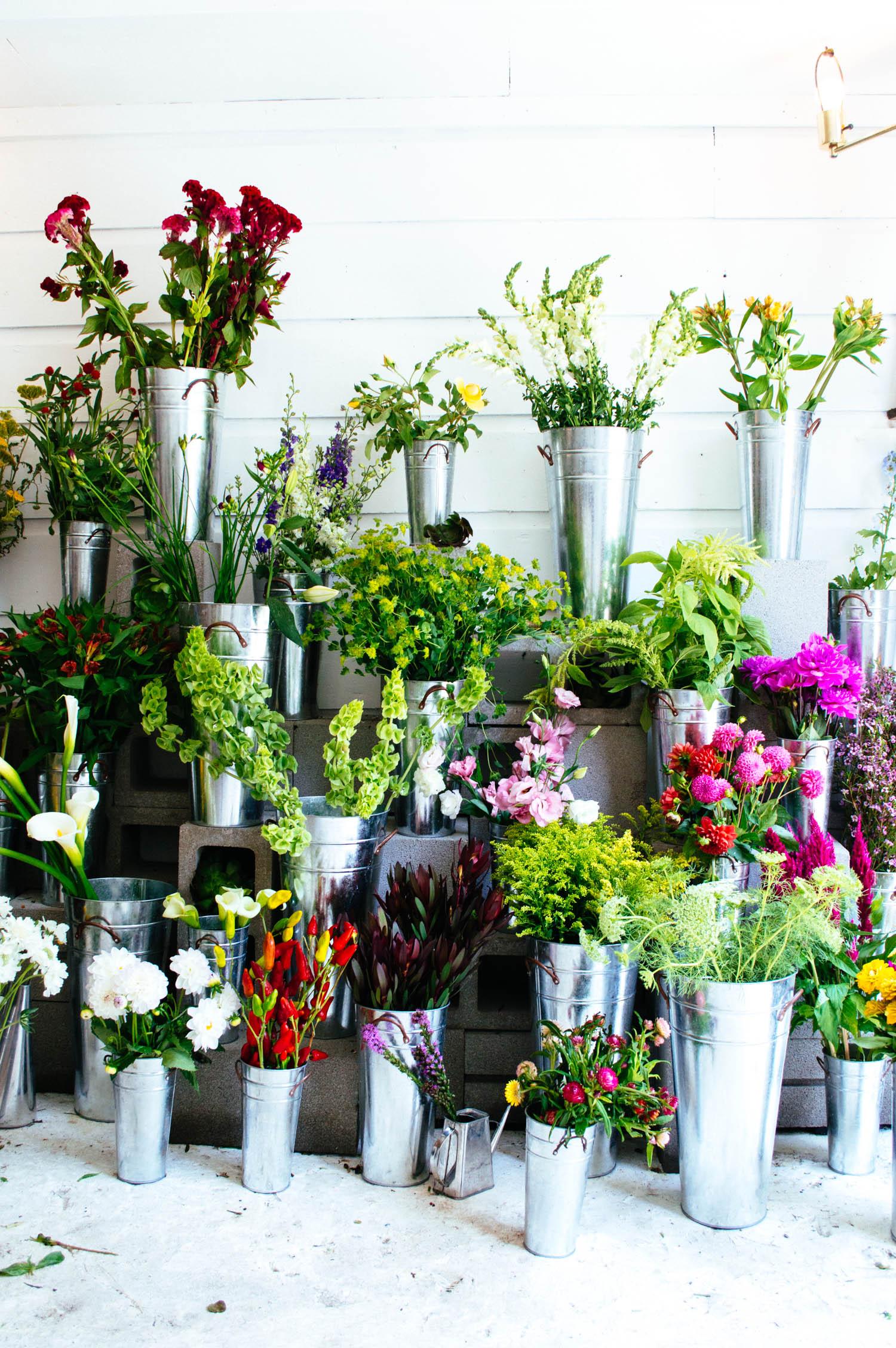 ampersand-flower-shop-san-francisco