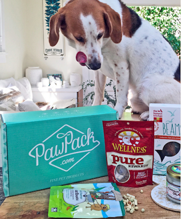 Pet Subscription Box Niche Products